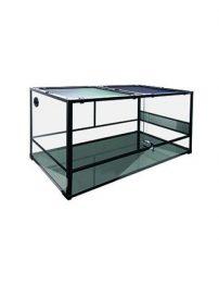 1200x600x600-terrarium-500x650