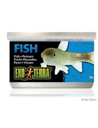 a-fish-500x650