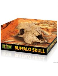 buffalo-skull-500x650