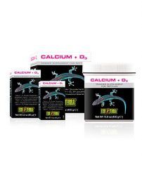 calcium-d3-supplement-500x650