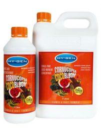 cornucopia-coco-bloom-500x650