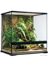med-tall-terrarium-500x650