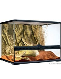 med-wide-terrarium-500x650
