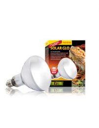 solar-glo-500x650